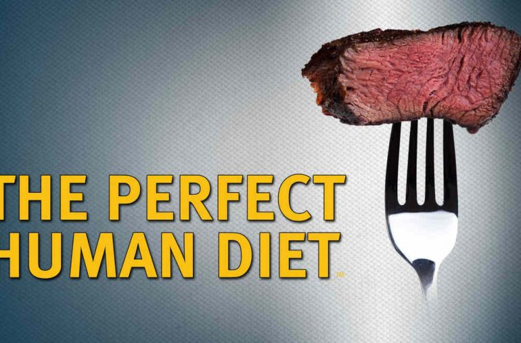 Film dokumentalny-The Perfect Human Diet